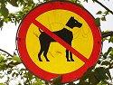 Reykjavik parks: No dogs!