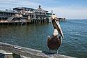 Cedar Key waterfront.