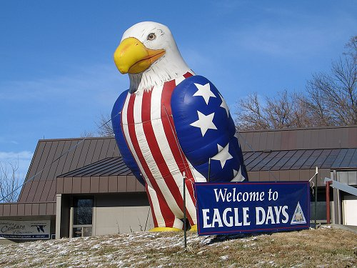 Giant rubber eagle welcomes visitors to Eagle Days, Squaw Creek NWR, Missouri, December 2005.  Click for next photo.