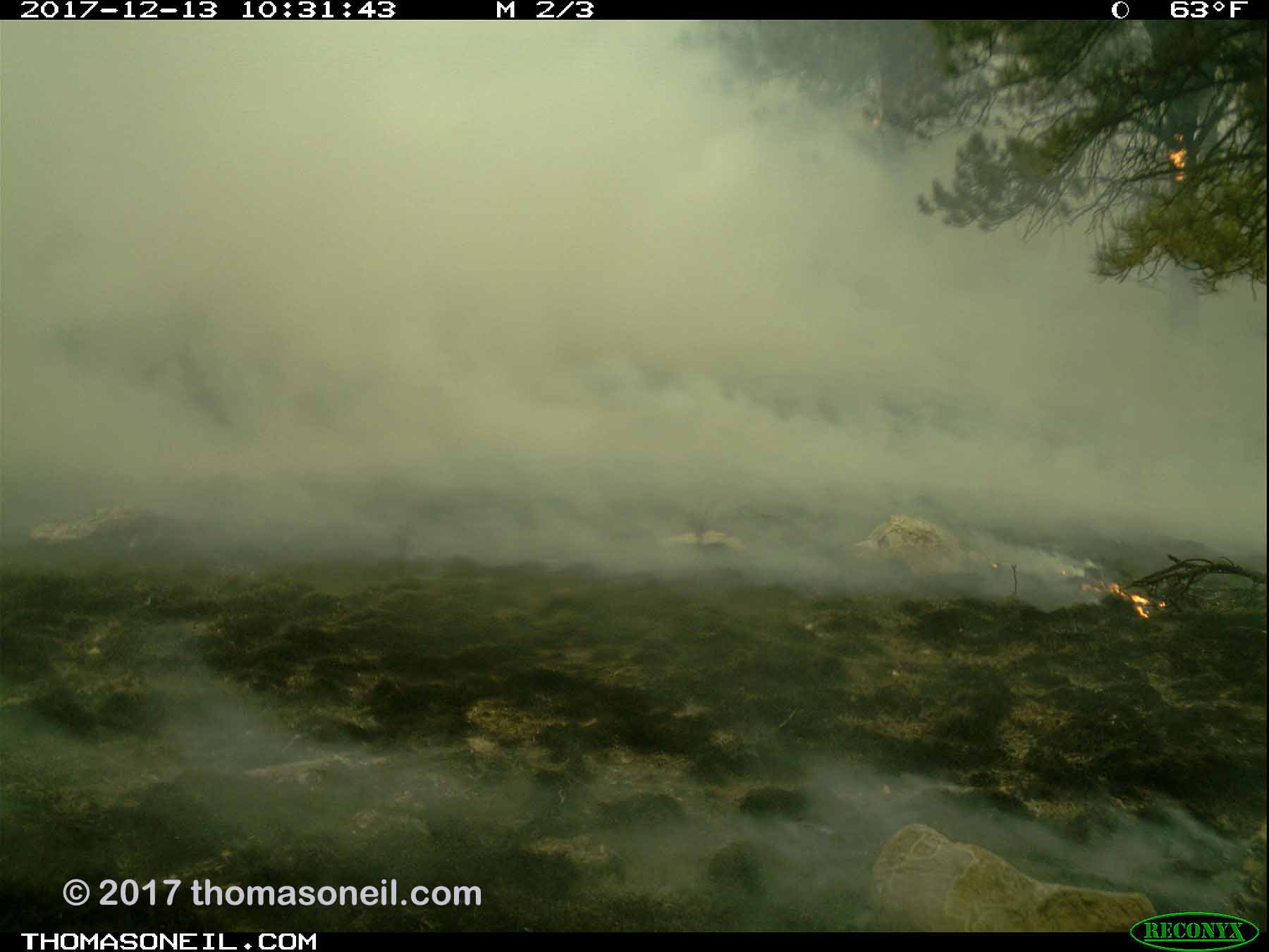 Less than nine minutes after the first image, the fire has charred the area and moved on, Wind Cave National Park.