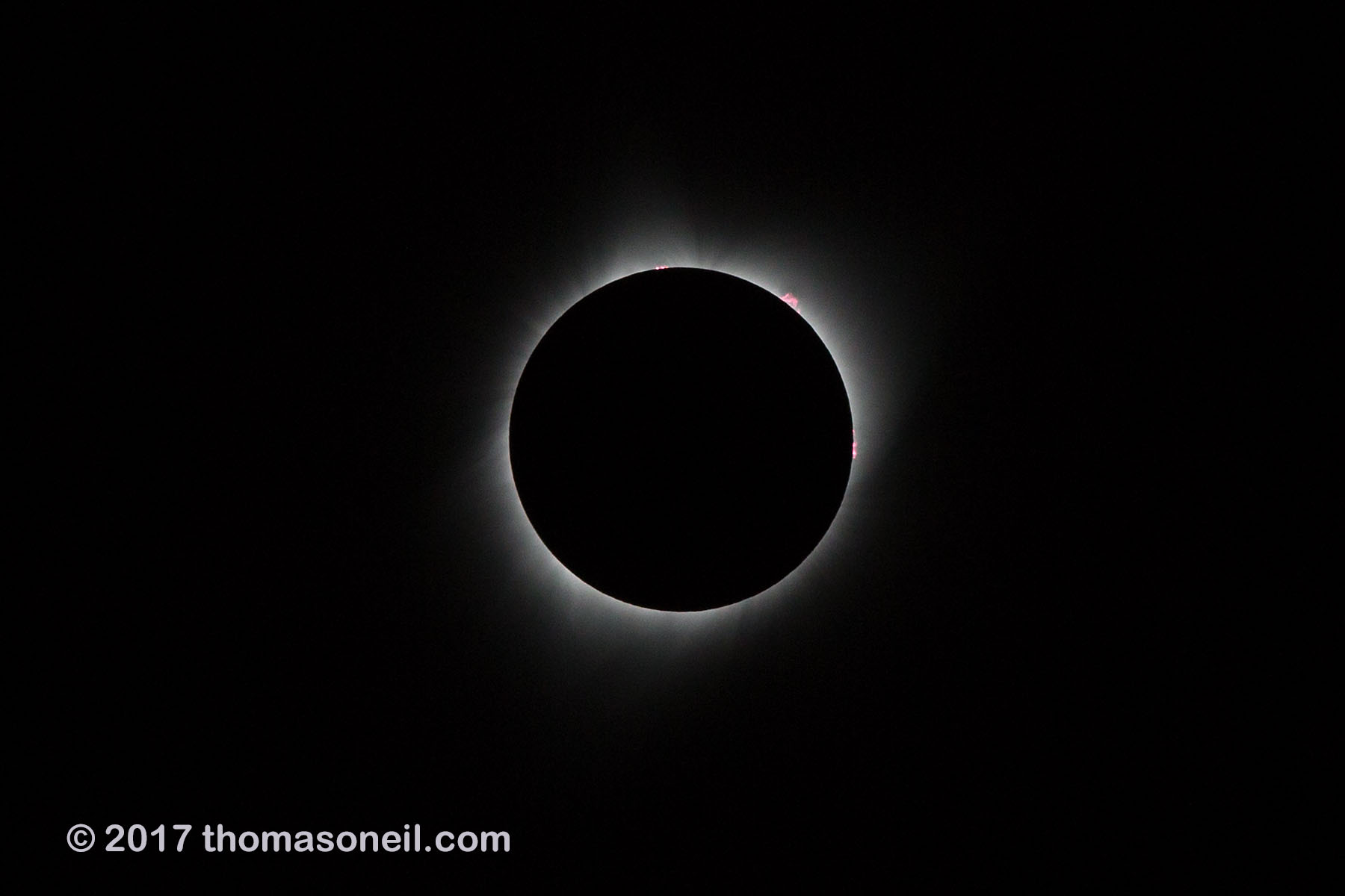 Solar eclipse, Aug. 21, 2017, very fast shutter speed (1/2500) reveals prominences rising from surface of the sun at 12:00, 1:00 and 3:00.  Click for next photo.