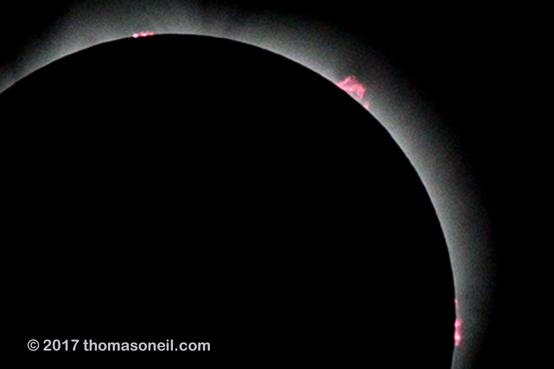 Solar eclipse, Aug. 21, 2017, a processed version of the previous image.  Very fast shutter speed (1/2500) reveals prominences rising from surface of the sun.  Click for next photo.