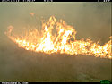 Big flare, Wind Cave National Park.